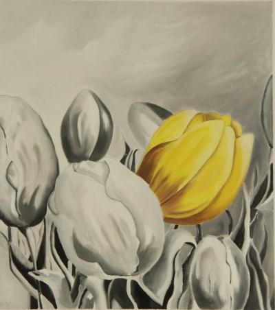 Tulpen in geel contrast