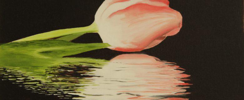 Reflectie rode tulp